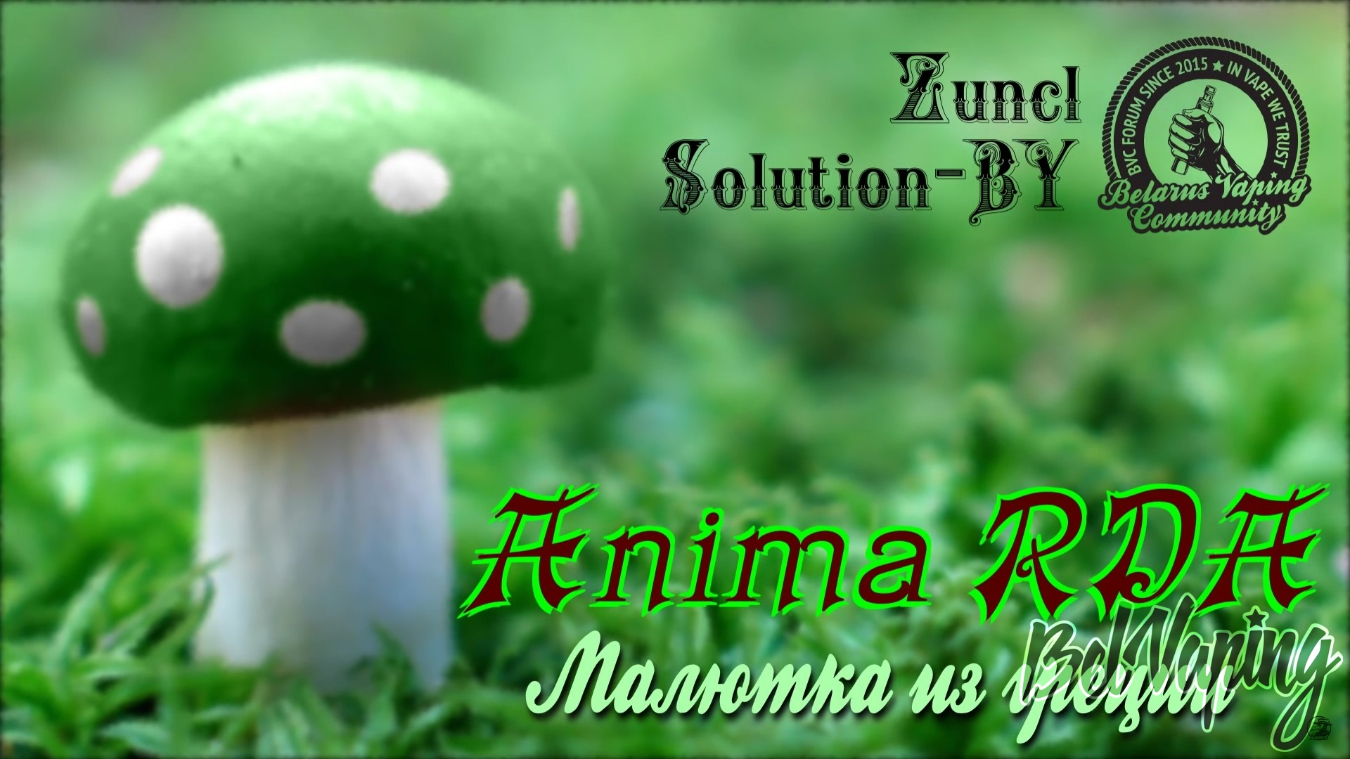 Обзор Anima RDA