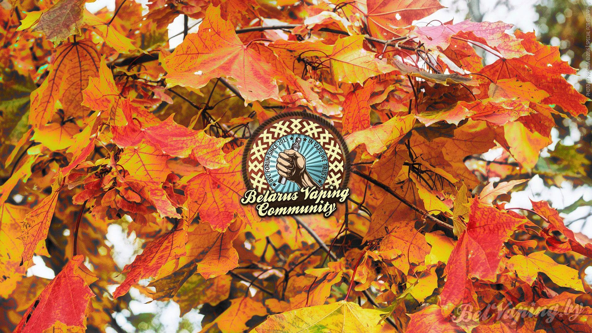 Обои BelVaping от Papruga и календарь на октябрь