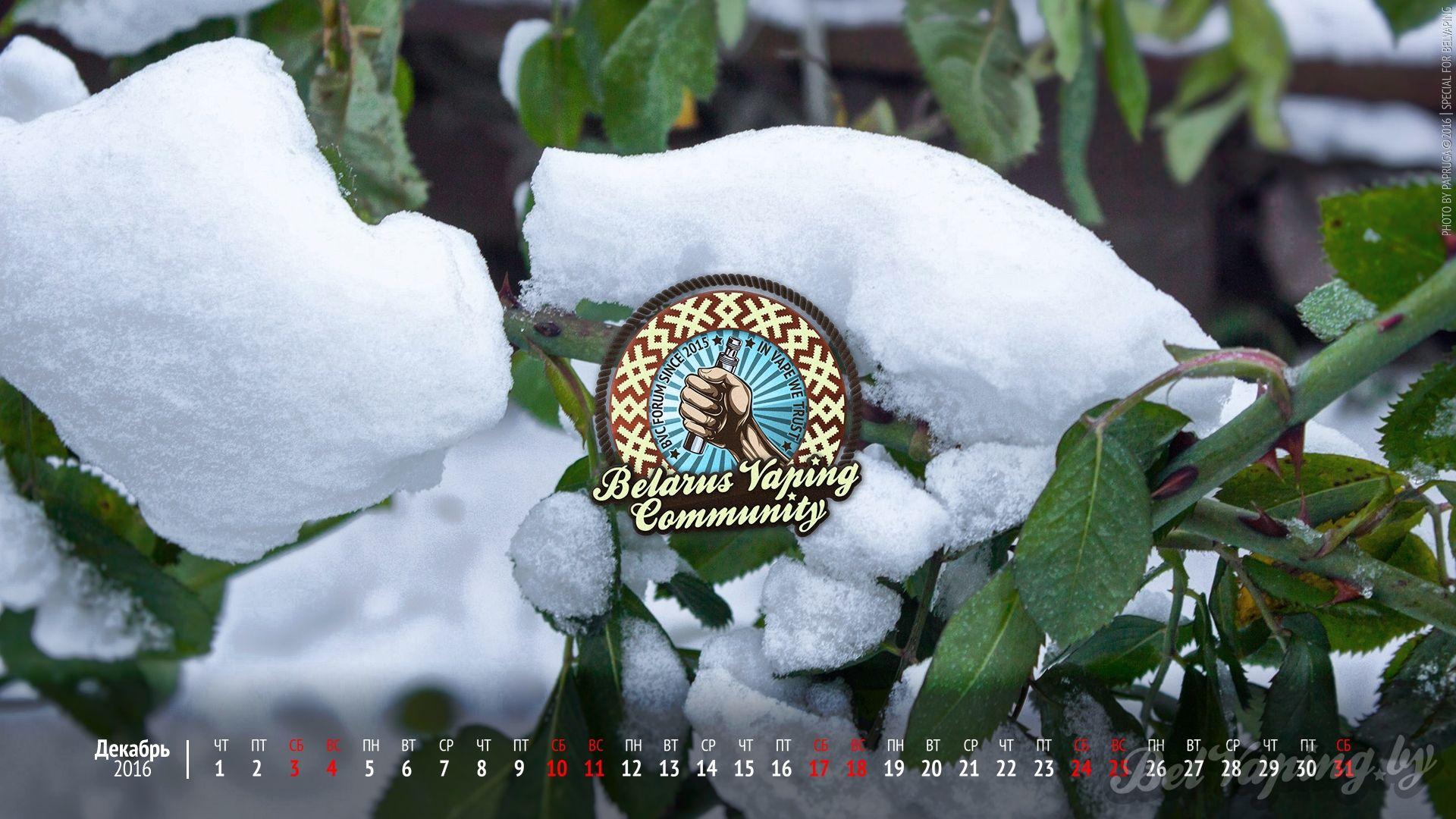 Обои BelVaping от Papruga и календарь на декабрь