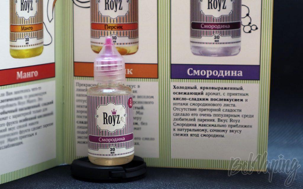 Обзор жидкости ROYZ - Смородина