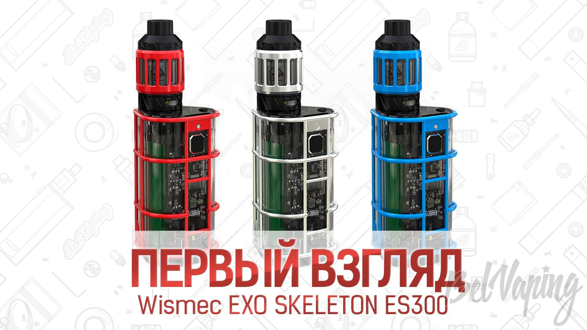 Wismec EXO SKELETON ES300. Первый взгляд