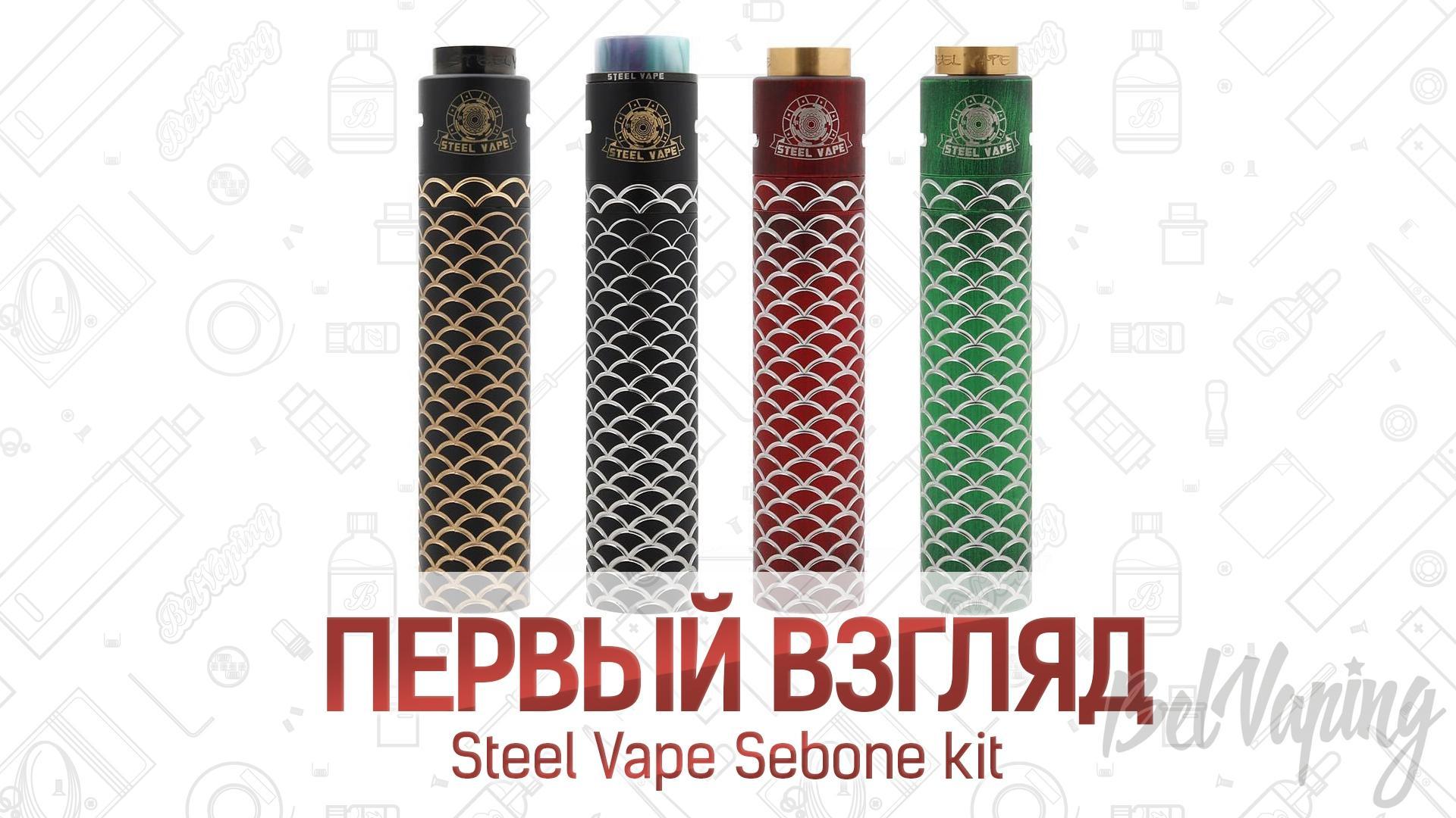 Steel Vape Sebone kit. Первый взгляд