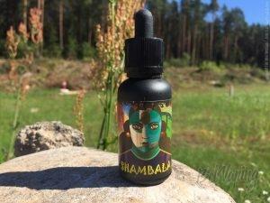 Жидкость #DUISNAMI Shambala