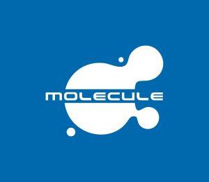 "Компания ""Молекула"""