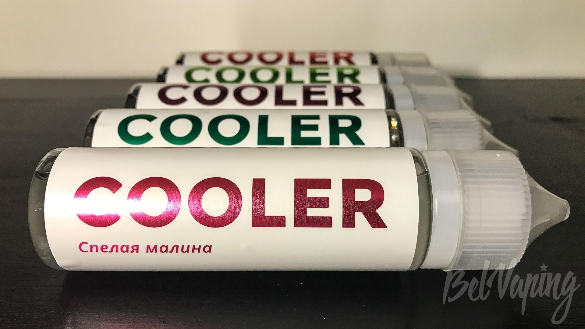 Обзор жидкости Dictator Liquid's - Cooler